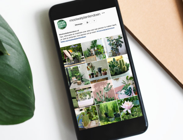 DESIGN INSTAGRAM FEED PLANTS FLOWER COUNCIL HOLLAND